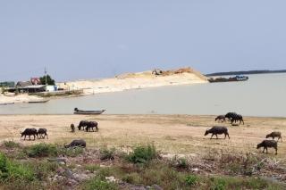 Tạm ngưng hoạt động khai thác cát trong hồ Dầu Tiếng kể từ ngày 20.4