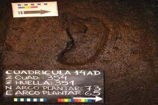 Các nhà khoa học tìm thấy dấu chân người cổ nhất tại châu Mỹ