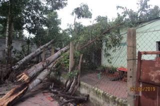 Châu Thành: Mưa giông, lốc xoáy làm 7 căn nhà bị hư hại