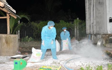 Phát hiện thêm trường hợp heo chết nghi nhiễm dịch tả heo Châu Phi
