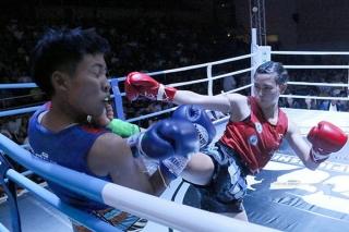 Nữ võ sĩ Việt Nam giành HC vàng giải Muay Thái thế giới