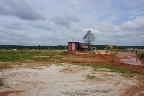 Không có việc doanh nghiệp lập bến bãi khai thác cát trên đất rừng