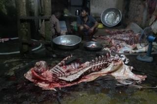 Phát hiện cơ sở giết mổ gia súc không phép ở Châu Thành