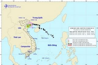Bão số 3 đi vào phía Bắc Quảng Ninh và suy yếu thành áp thấp nhiệt đới