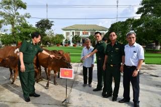 Đồn biên phòng Mộc Bài tặng bò cho người nghèo biên giới