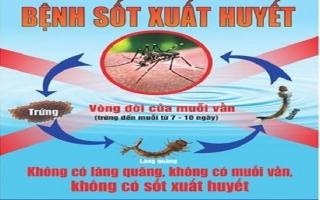 Tăng cường phòng chống bệnh sốt xuất huyết