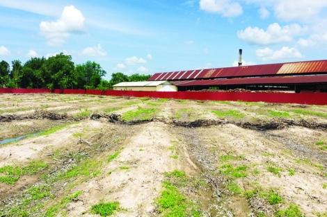 Ngăn chặn tình trạng tự ý rao bán đất nền