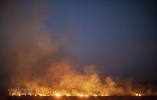 Brazil sẵn sàng tiếp nhận trợ giúp nước ngoài cứu rừng Amazon