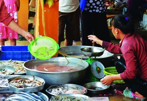 Hải sản chứa tạp chất ở các chợ dân sinh đã giảm