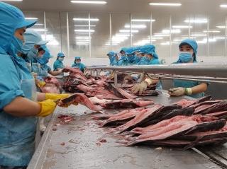 Doanh nghiệp cần thực hiện đúng các thủ tục khi xuất khẩu hàng thuỷ, hải sản sang Trung Quốc