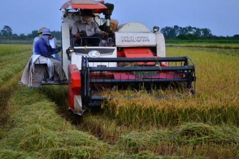 Cần xây dựng niềm tin giữa doanh nghiệp và nông dân