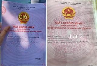 Cảnh báo tình trạng thế chấp sổ đỏ giả ở Tây Ninh