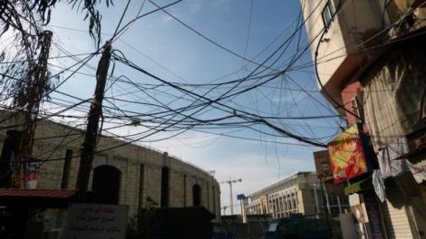 Trộm điện để sống sót