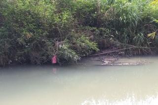 Suối Trí Huệ bị ô nhiễm
