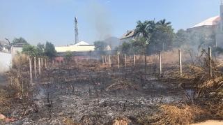 Cháy cỏ khô trên diện tích 10.00m 2 đất