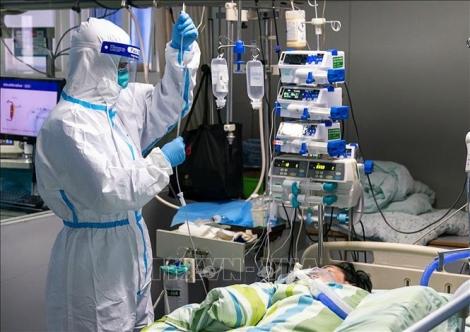 Dịch bệnh viêm phổi do virus corona: Những điều cần biết