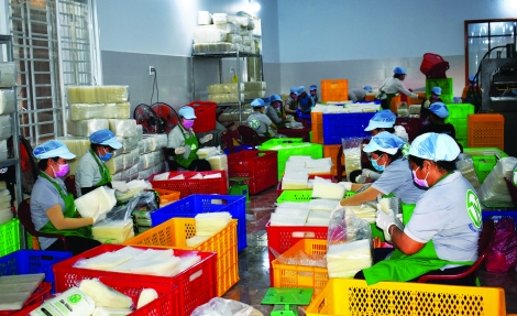 Doanh nhân trẻ khởi nghiệp bằng thực phẩm sạch