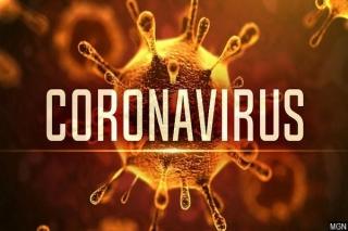 Học sinh, sinh viên Tây Ninh tạm thời nghỉ học phòng dịch virus corona