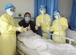 Nhật Bản tìm ra chuỗi gen virus nCoV