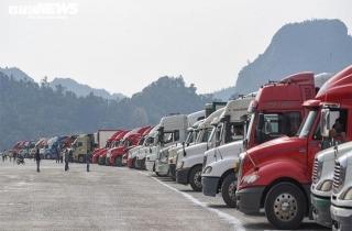 Hàng nghìn tấn nông sản vẫn kẹt cứng tại cửa khẩu
