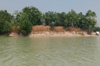 Người dân bức xúc tình trạng khai thác cát gần bờ sông Sài Gòn