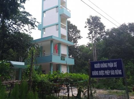 Tập trung phòng cháy chữa cháy rừng mùa khô 2019-2020