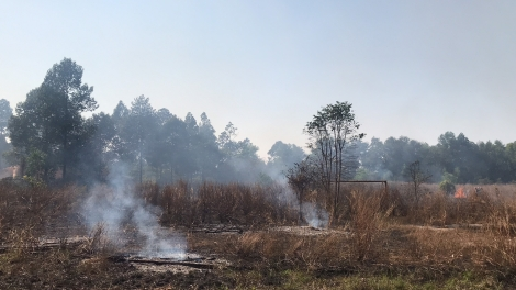 Cháy cỏ khô ở khuôn viên Trường CĐSP Tây Ninh