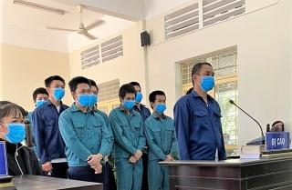 Trộm mai, 10 đối tượng lãnh án 27 năm tù