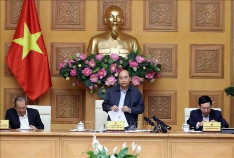 Thủ tướng: Kiên quyết nhưng bình tĩnh chống dịch COVID-19