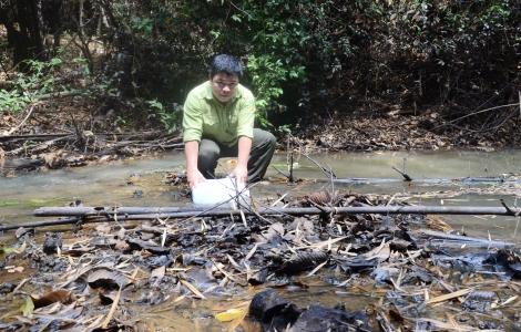 Suối Đa Ha cạn nước, công tác chữa cháy rừng gặp khó