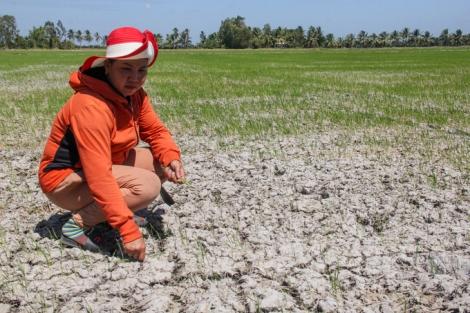 Chuyên gia Mỹ: 'Trung Quốc có thể giữ 50% nước Mekong vào mùa khô'