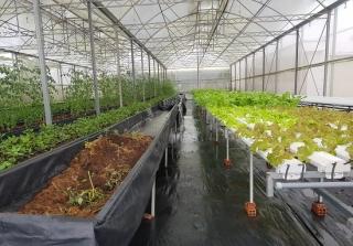 Tìm giải pháp đổi mới cơ cấu vốn trong phát triển nông nghiệp