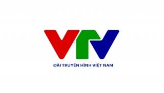 Cơ cấu tổ chức mới của Đài Truyền hình Việt Nam