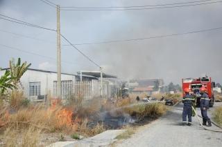 Đốt chủ động cỏ khô để phòng cháy