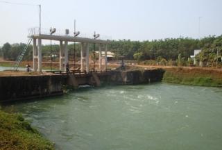 Mở nước phục vụ sản xuất vụ Hè thu 2020