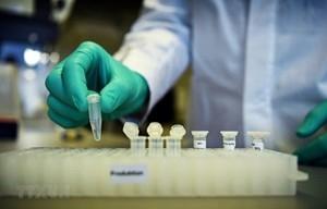 Australia thử nghiệm vaccine COVID-19 giai đoạn 1
