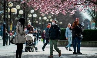 Cảnh báo 5 triệu người Thụy Điển có thể nhiễm nCoV