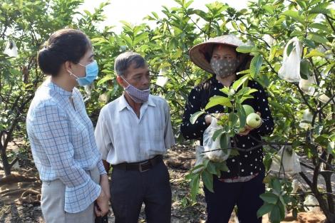 Giãn nợ, giảm lãi để hỗ trợ nông dân phát triển sản xuất giữa dịch Covid-19
