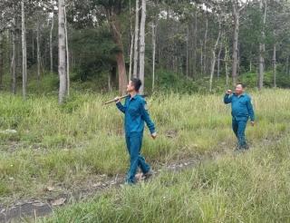 Nỗ lực trong công tác quản lý bảo vệ rừng