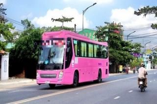 Tây Ninh: Tổ chức lại các hoạt động vận tải kể từ 0 giờ ngày 24.4