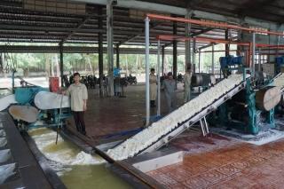 Tây Ninh: Tiếp tục thực hiện các biện pháp phòng, chống dịch Covid-19 trong tình hình mới