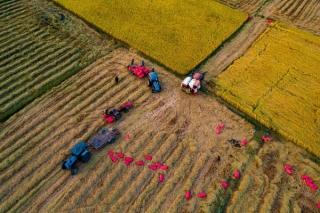 Tây Ninh trên đường đổi mới, phát triển (Tiếp theo và hết)