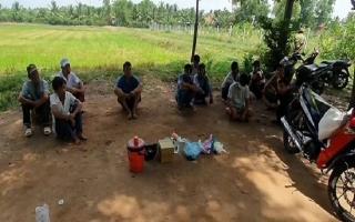 Hòa Thành: Triệt xóa tụ điểm đá gà ăn tiền