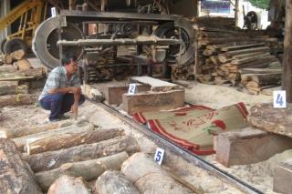 Tân Biên: Tai nạn máy cưa, một người tử vong