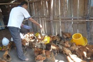 HĐND tỉnh: Giám sát kết quả thực hiện Chương trình mục tiêu quốc gia giảm nghèo bền vững, giai đoạn 2016-2020