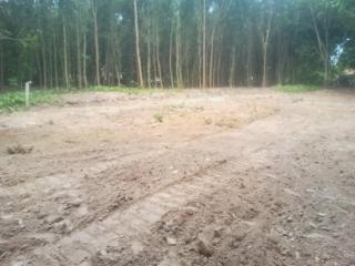 UBND Châu Thành: Kiên quyết xử lý các trường hợp vi phạm huỷ hoại đất