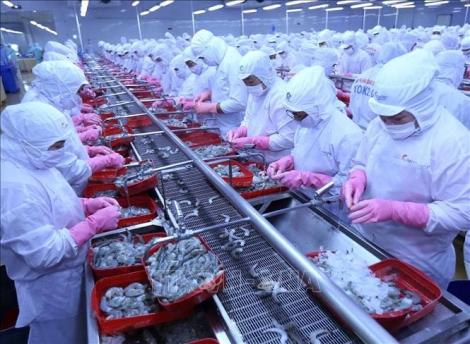 Hiệp định EVFTA giúp Việt Nam có một vị trí thuận lợi trong trật tự kinh tế quốc tế mới