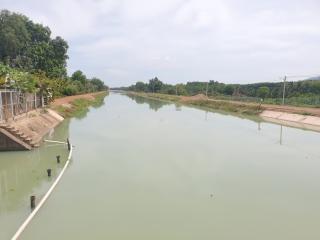 Tìm giải pháp cấp nước cho đến vụ Hè thu năm 2020