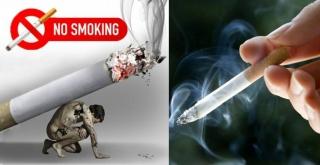 Tăng cường công tác phòng, chống tác hại thuốc lá