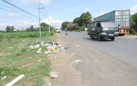 Nhếch nhác bãi rác ven đường